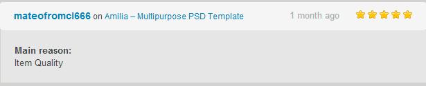 Amilia – Multipurpose PSD Template